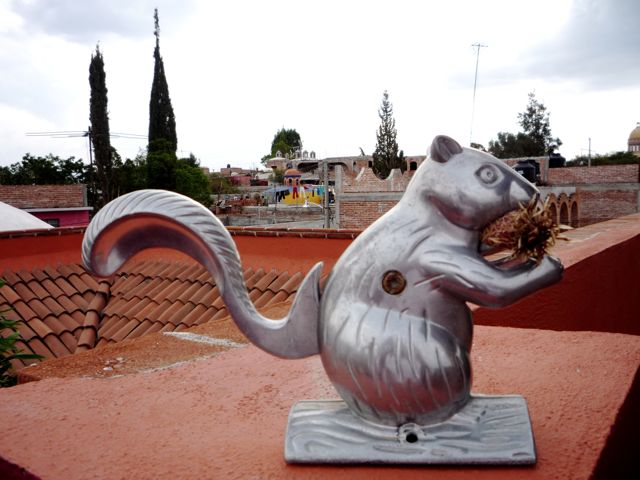 Our nutcracker squirrel who now lives on the terrazza. In the background, Eutimio (of the barking dog story) has just about completed his new house and painted it so typically Mexican and it looks great against all the unfinished brick walls here.